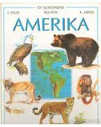 Amerika - Felix, Jiri