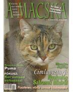 A Macska 2006. május-június (újság) - László Erika