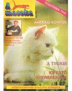 A Macska 1996. március (újság) - László Erika