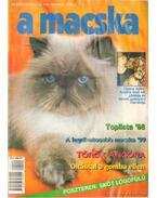 A Macska 1999. március-április (újság) - László Erika