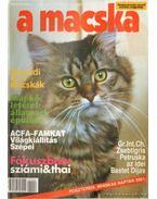 A Macska 2000. november-december (újság) - László Erika