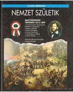 Nemzet születik - Závodszky Géza, Hermann Róbert