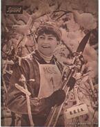 Képes Sport 1964. XI. évfolyam (teljes) - Pásztor Lajos