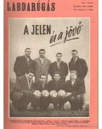 Labdarúgás 1961. teljes (1-12.szám) - Hoffer József