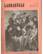 Labdarúgás 1962. teljes - Hoffer József