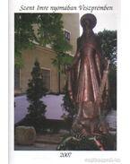 Szent Imre nyomában Veszprémben - Toldi Éva