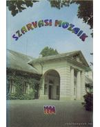 Szarvasi Mozaik 1994 - Dr. Szilvássy László