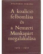 A koalíció felbomlása és a Nemzeti Munkapárt megalakulása 1909-1910 - Pölöskei Ferenc