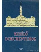 Mesélő dokumentumok - Farkas Csaba