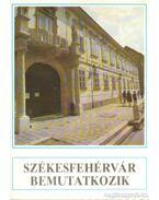 Székesfehérvár bemutatkozik - Dr. Orbán Zoltán (szerk), Dr. Fábián Ferenc
