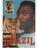Brazil futballszamba - Dénes Tamás