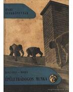 Épületbádogos munka - Kollányi Béla, Mózes Sándor