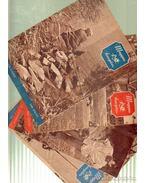 Magyar Horgász 1960. (hiányos) - Vigh József