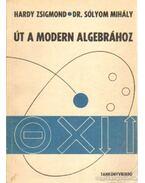 Út a modern algebráboz - Sólyom Mihály