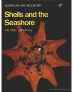 Shells and the Seashore - Child, John, Currey, John