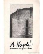 A napló 1977-1982 - Barna Imre, Várady Szabolcs, Kenedi János, Sulyok Imre