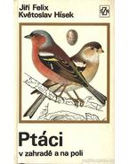 Ptáci v zahrade a na poli - Hísek, Kvetoslav, Felix, Jiri