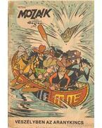 Veszélyben az aranykincs (Mozaik 1973/8.) - Hegen, Hannes
