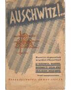 Auschwitz - Somos István