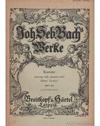 Schweigt stille, plaudert nicht - Kantate BWV 211 - Bach, Johann Sebastian