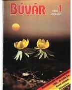 Búvár 1985 (teljes évfolyam) - Dosztányi Imre (szerk.)