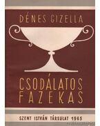 Csodálatos fazekas - Dénes Gizella