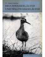 Bruchwasserlaufer und Waldwasserlaufer (A réti cankó és az erdei cankó)-1978 - Kirchner, Heinrich dr.