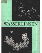 Wasserlinsen - Schulz, Bruno