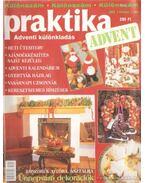 Praktika 2003. 1. szám - különszám - Boda Ildikó (főszerk.)