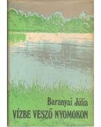 Vízbe vesző nyomokon - Baranyai Júlia