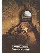 Ipolytarnóc - Ősmaradványok - Köböl Vera