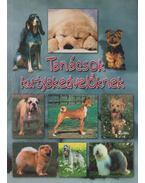Tanácsok kutyakedvelőknek - Koch-Kostersitz, Manfred