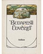 Budapesti üdvözlet - Kollin Ferenc
