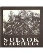 Sulyok Gabriella - Komoróczy Géza