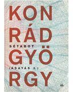 Sétabot - Ásatás 3. - Konrád György