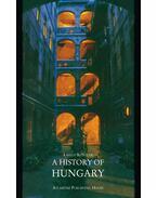A History of Hungary - Kontler László
