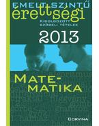 Emelt szintű érettségi 2013 - Kidolgozott szóbeli tételek - Matematika - Korányi Erzsébet