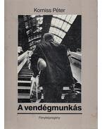 A vendégmunkás / The Guest Worker - Korniss Péter, Losonczi Ágnes