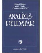 Analízis-példatár - Kósa András, Mezei István, S. Gyarmati Erzsébet