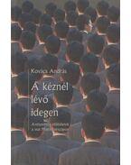 A kéznél lévő idegen - Kovács András