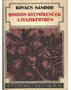 Bogyós gyümölcsűek a házikertben - Kovács Sándor