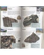 Kőzetek és ásványok - Price, Monica, Walsh, Kevin