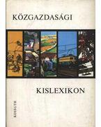 Közgazdasági kislexikon - Varsádi Zsuzsa