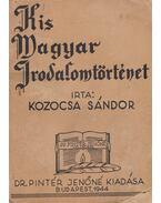 Kis magyar irodalomtörténet - Kozocsa Sándor