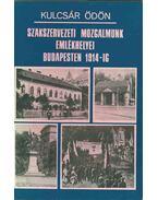 Szakszervezeti mozgalmunk emlékhelyei Budapesten 1914-ig - Kulcsár Ödön