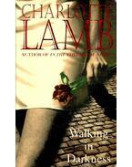 Walking in Darkness - Lamb, Charlotte