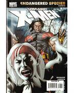 Uncanny X-Men No. 490 - Larroca, Salvador, Brubaker, Ed