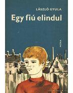 Egy fiú elindul - László Gyula