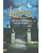 Laura und das Geheimnis von Aventerra - Peter Freund