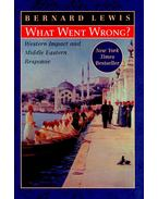 What Went Wrong? - Approaches to the Modern History of the Middle East - Lewis, Bernard